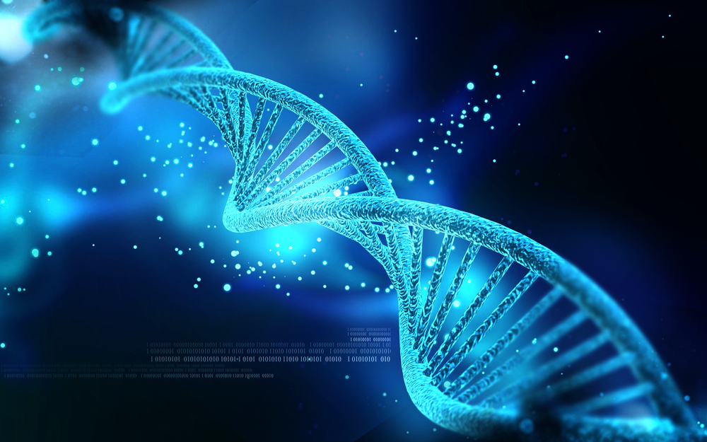 DNA of a small business, or How to stop to be one